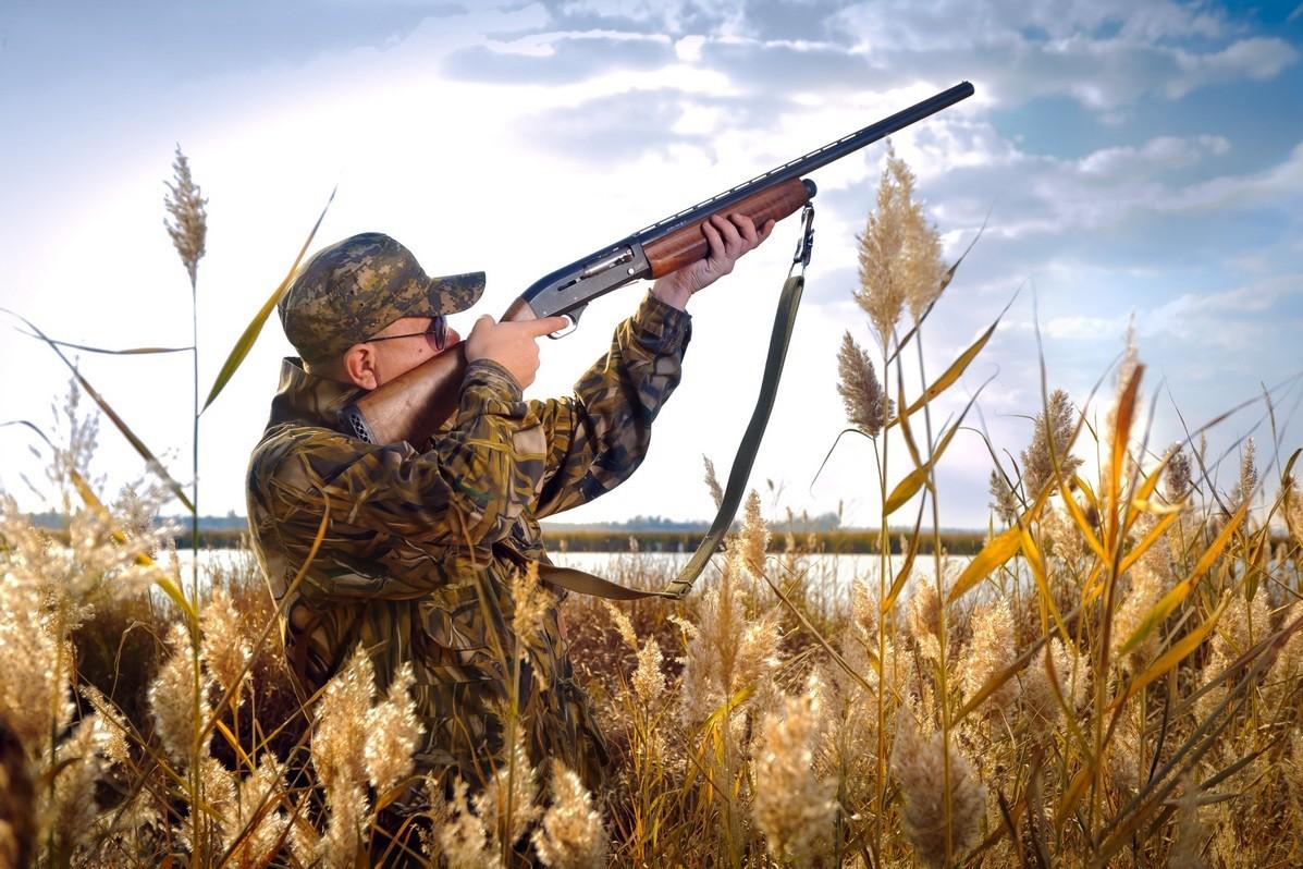 Охотник на картинках